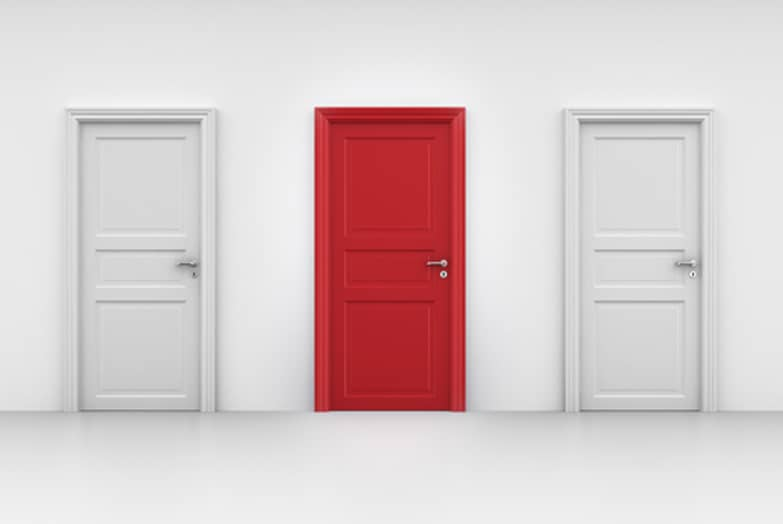 Which Door Will You Choose?
