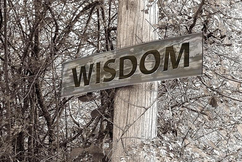 How Wise Leaders Handle Adversity: Part 1