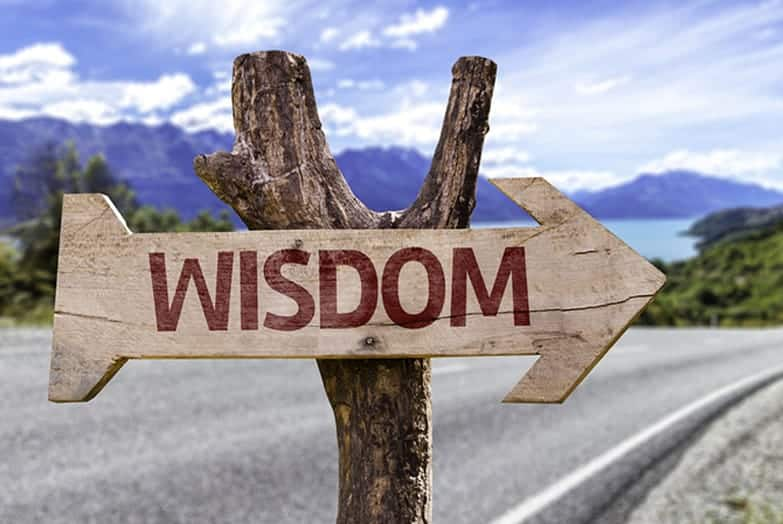 How Wisdom Can Help Your Business and Life Flourish